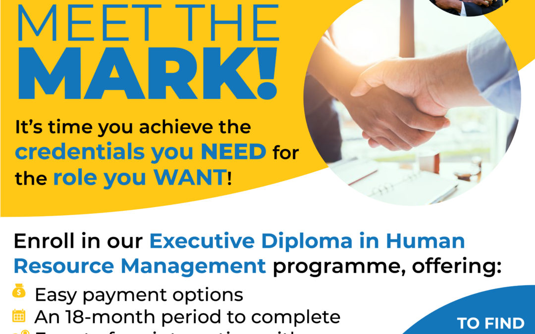 """Meet the Mark"" with our EDM HR Programme"